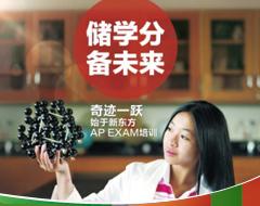 AP*Exam微积分BC冲刺班
